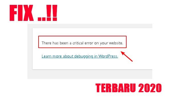 there has been a critical error on your website